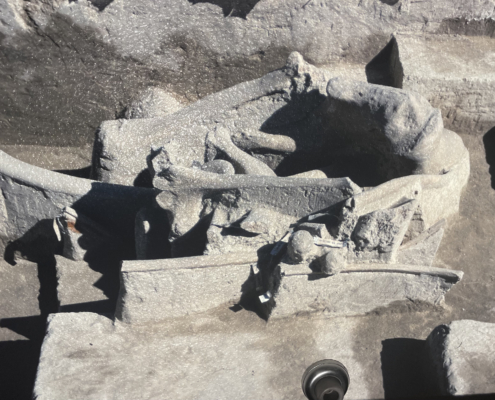 Columbian Mammoth bone dig with Molly Moore